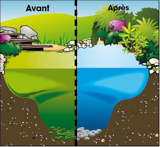 Appareil de traitement de l 39 eau algclear uvc 20000 ubbink for Bassin de jardin algues vertes