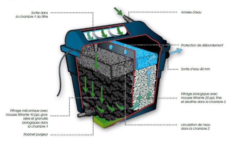 Filtre bassin biologique for Bassin biologique