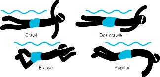 toutes_nages_ceinture-ncc